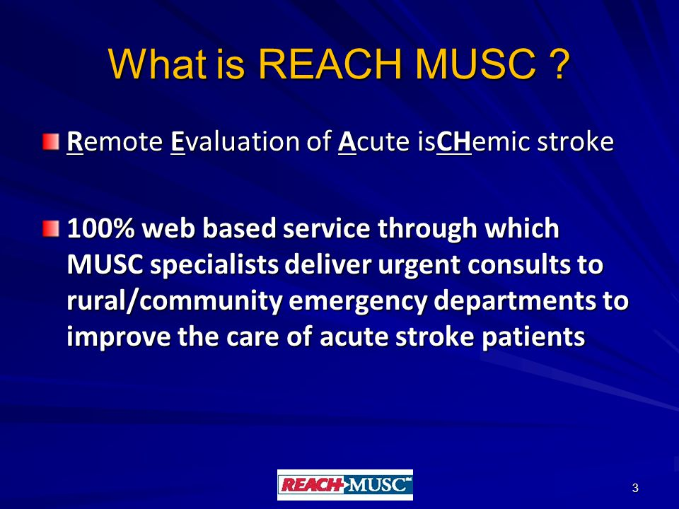 What is REACH MUSC .