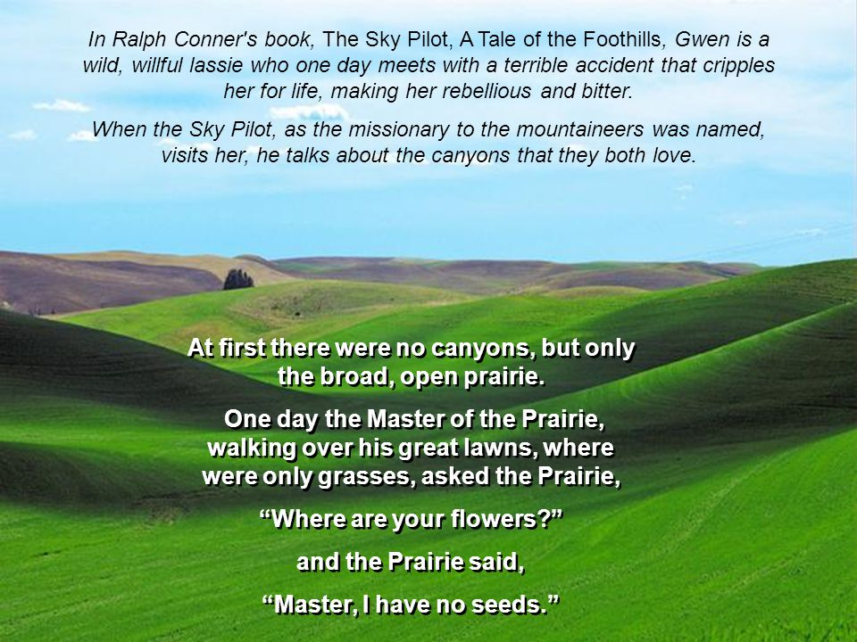 In Ralph Conner s book, The Sky Pilot, A Tale of the Foothills, Gwen is a wild, willful lassie who one day meets with a terrible accident that cripples her for life, making her rebellious and bitter.
