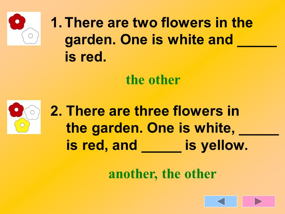 1.There are two flowers in the garden. One is white and _____ is red. 2. There are three flowers in the garden. One is white, _____ is red, and _____