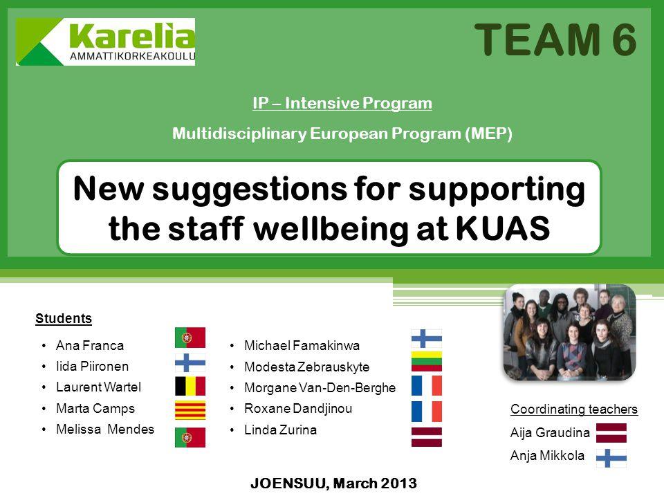 JOENSUU, March 2013 IP – Intensive Program Multidisciplinary European Program (MEP) TEAM 6 New suggestions for supporting the staff wellbeing at KUAS