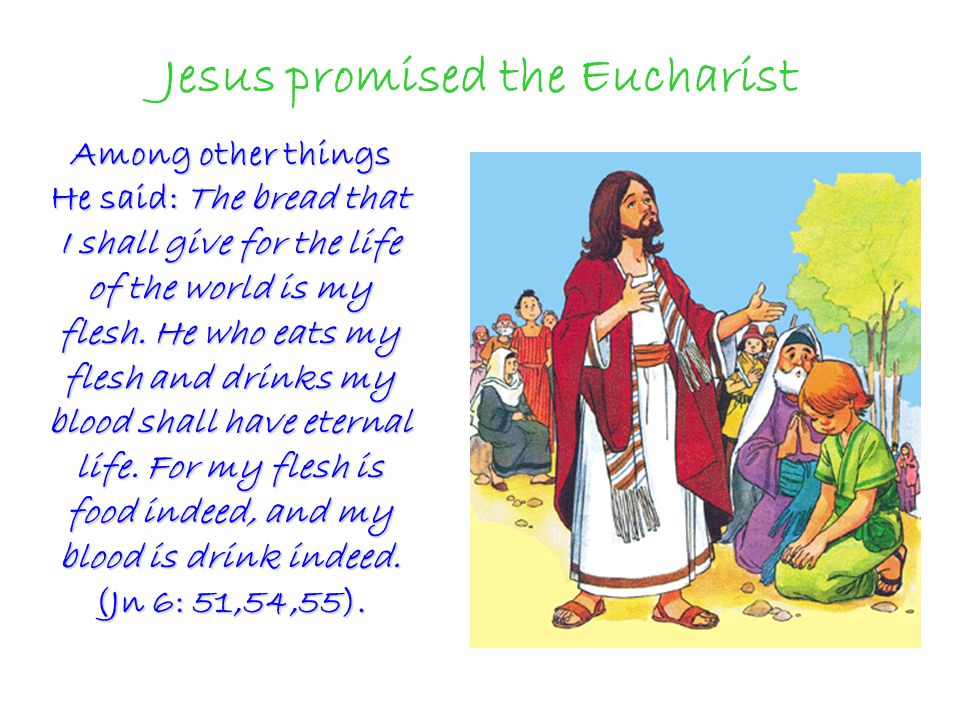 Jesus promised the Eucharist Among other things He said: The bread that I shall give for the life of the world is my flesh.