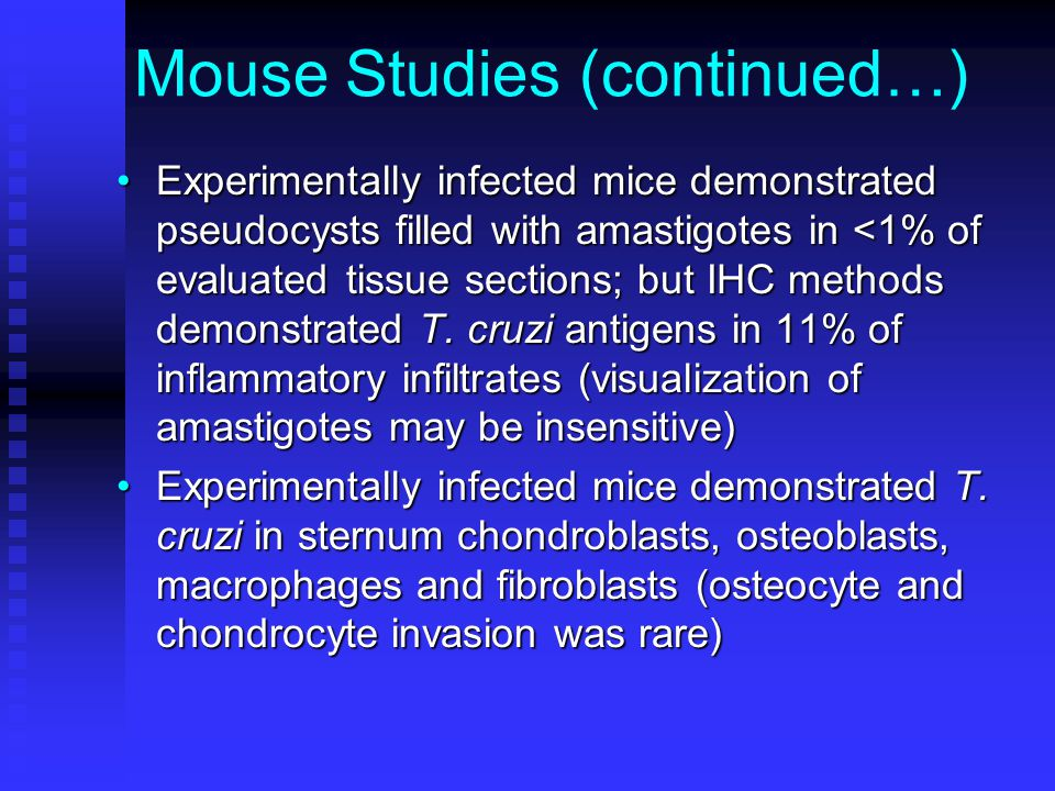 Mouse Studies (continued…) Experimentally infected mice demonstrated pseudocysts filled with amastigotes in <1% of evaluated tissue sections; but IHC methods demonstrated T.