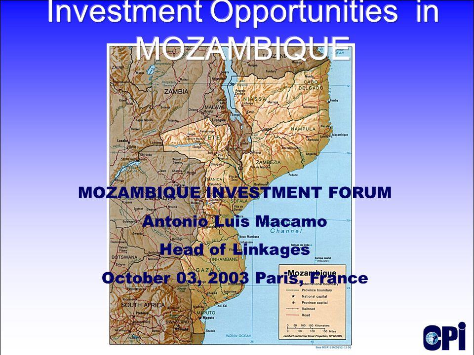 MOZAMBIQUE INVESTMENT FORUM Antonio Luis Macamo Head of Linkages October 03, 2003 Paris, France