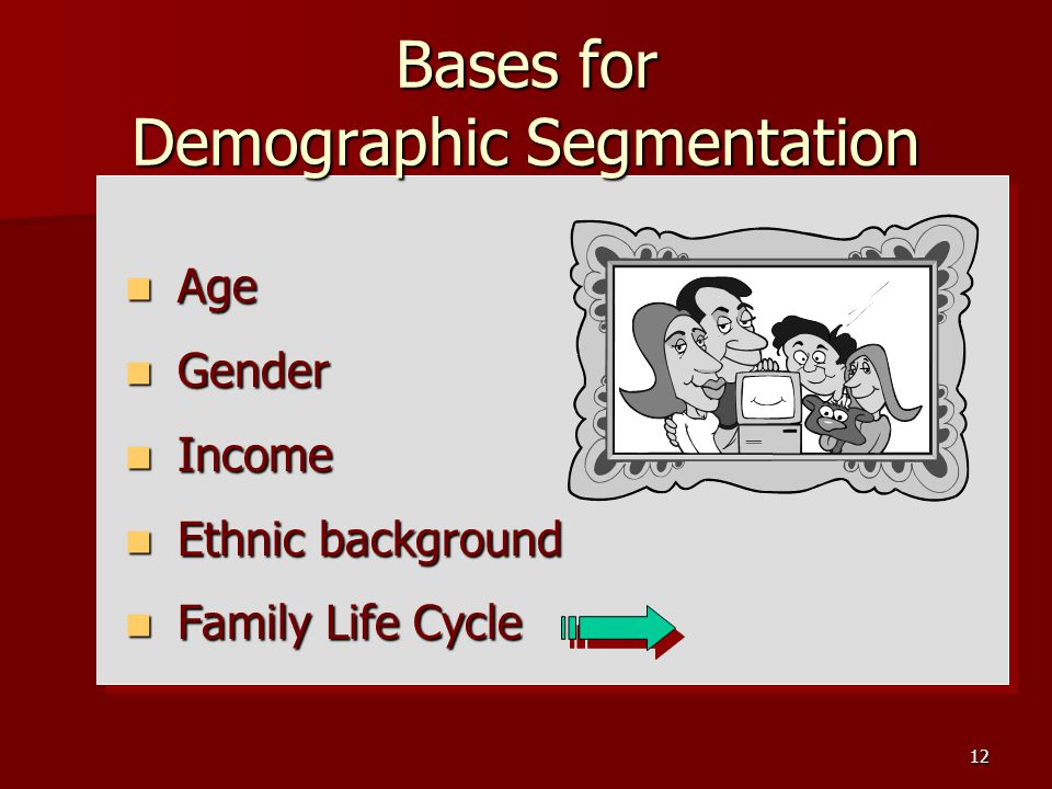 12 Bases for Demographic Segmentation Age Age Gender Gender Income Income Ethnic background Ethnic background Family Life Cycle Family Life Cycle