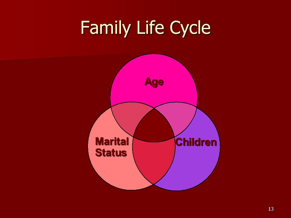 13 Family Life Cycle Age Marital Status Children