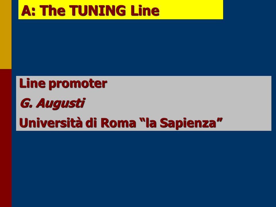 A: The TUNING Line Line promoter G. Augusti Università di Roma la Sapienza