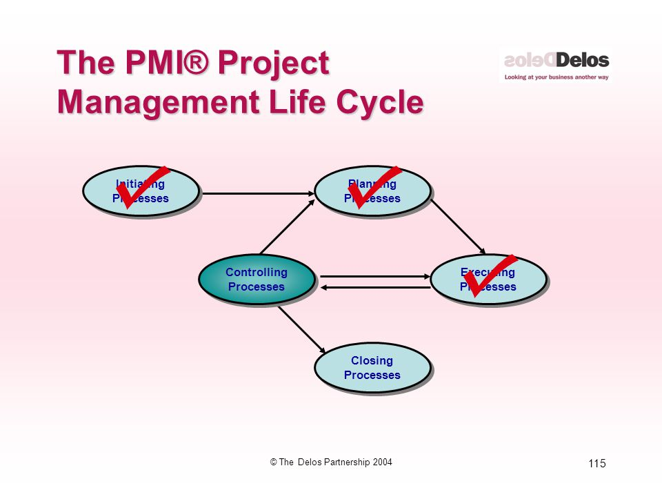 115 © The Delos Partnership 2004 The PMI® Project Management Life Cycle Initiating Processes Initiating Processes Planning Processes Planning Processe