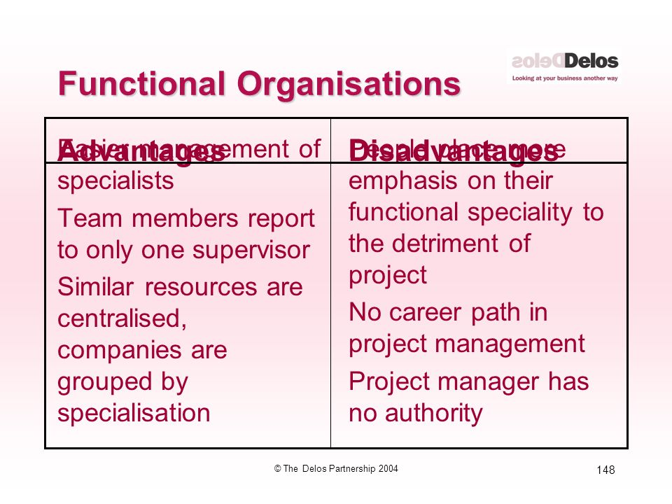 148 © The Delos Partnership 2004 Functional Organisations Easier management of specialists Team members report to only one supervisor Similar resource