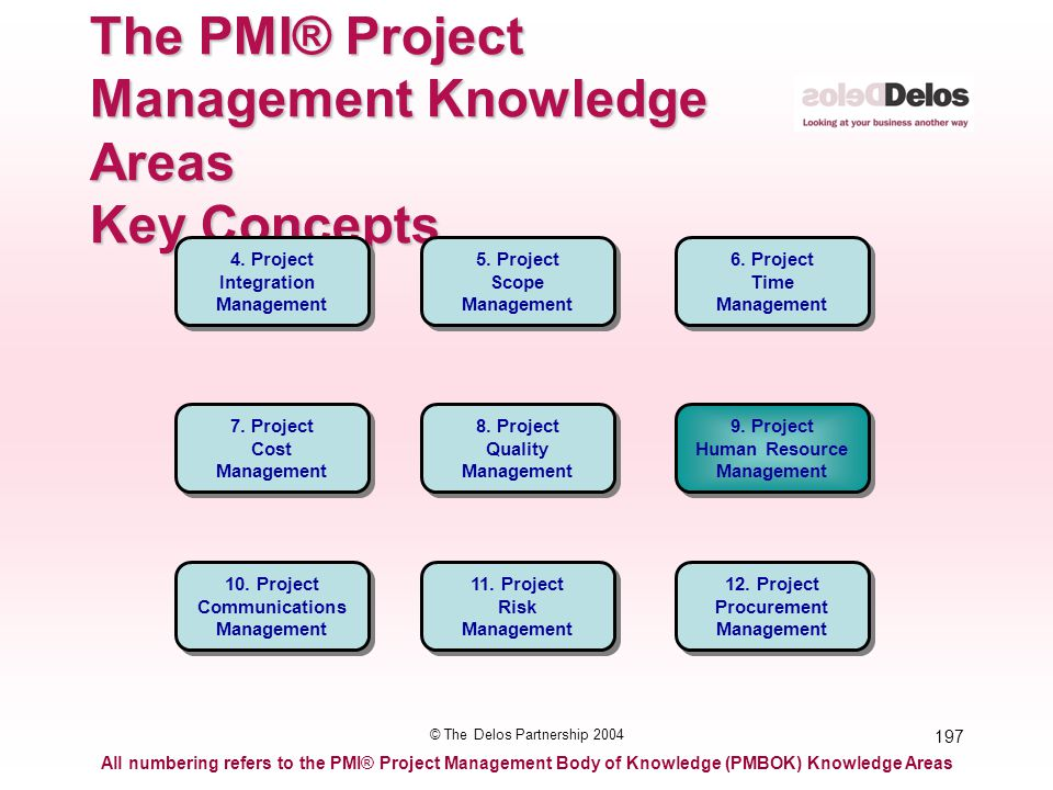 197 © The Delos Partnership 2004 The PMI® Project Management Knowledge Areas Key Concepts All numbering refers to the PMI® Project Management Body of