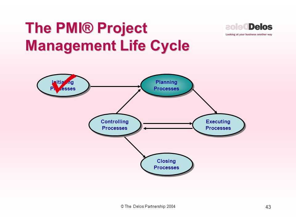 43 © The Delos Partnership 2004 The PMI® Project Management Life Cycle Initiating Processes Initiating Processes Planning Processes Planning Processes