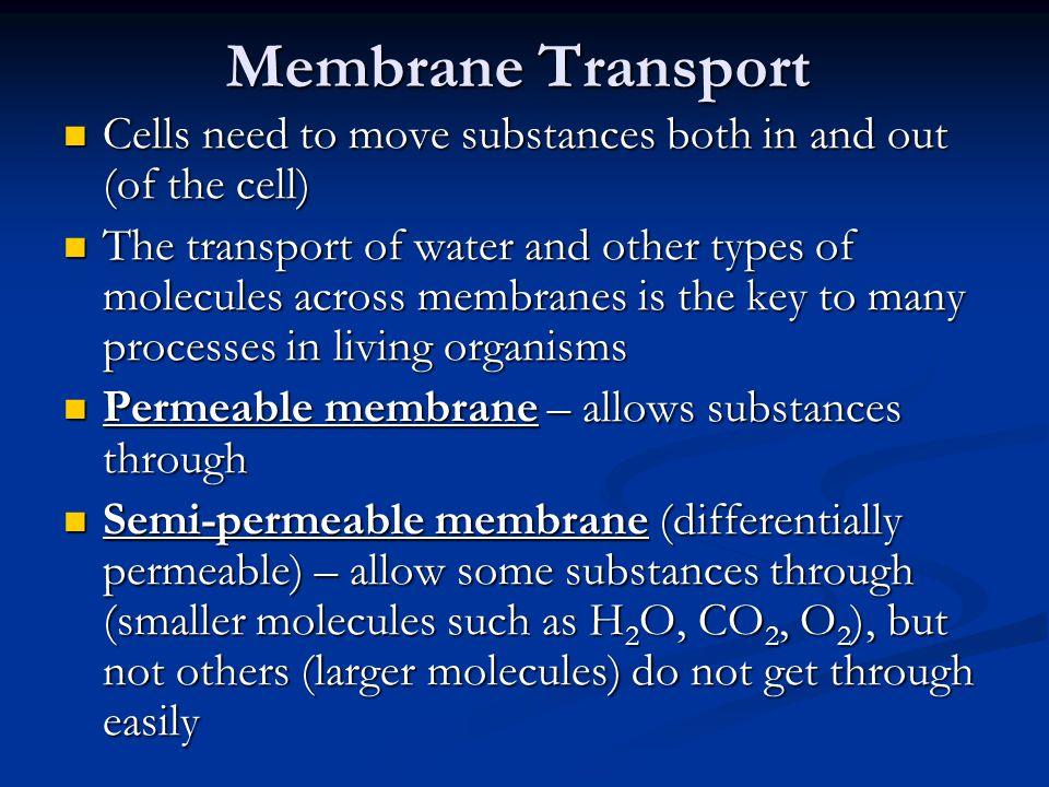 Passive transport – movement of substances that requires no energy (e.g.