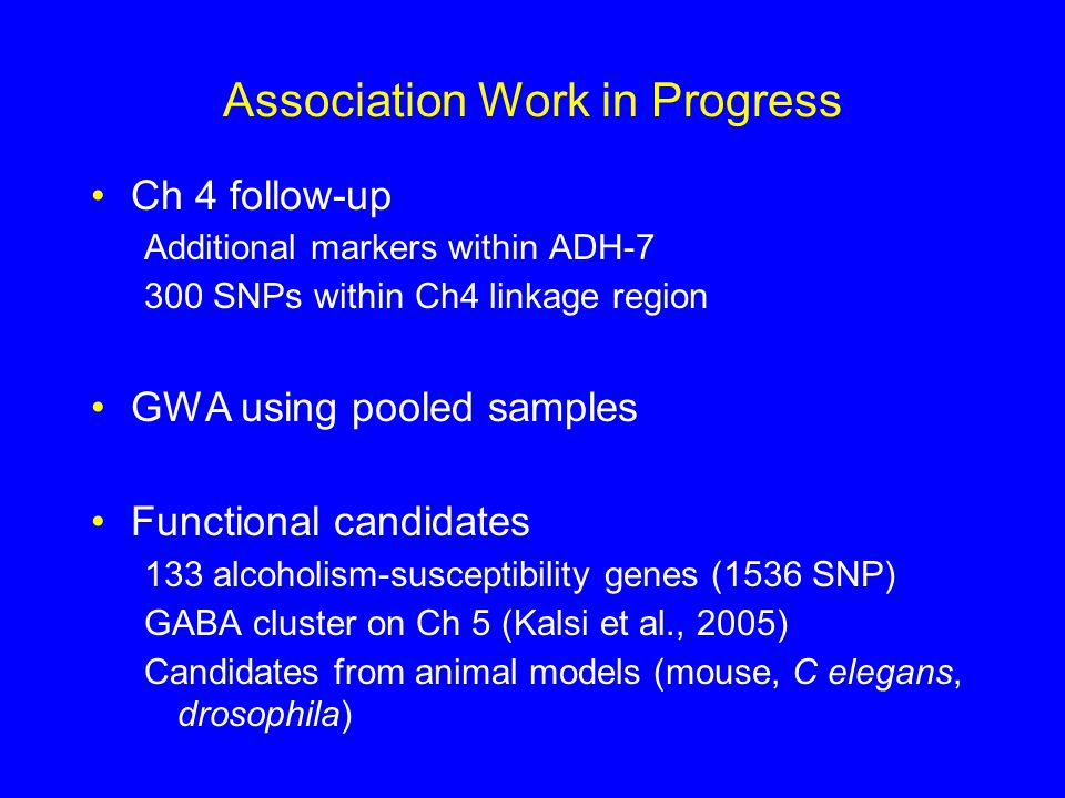 Association Work in Progress Ch 4 follow-up Additional markers within ADH-7 300 SNPs within Ch4 linkage region GWA using pooled samples Functional candidates 133 alcoholism-susceptibility genes (1536 SNP) GABA cluster on Ch 5 (Kalsi et al., 2005) Candidates from animal models (mouse, C elegans, drosophila)