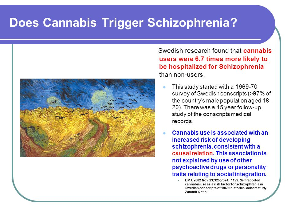 Does Cannabis Trigger Schizophrenia? Swedish research found that cannabis users were 6.7 times more likely to be hospitalized for Schizophrenia than n