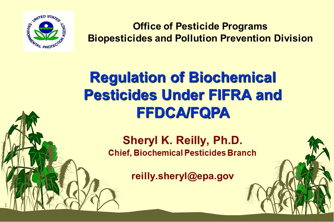 1 Office of Pesticide Programs Biopesticides and Pollution Prevention Division Sheryl K. Reilly, Ph.D. Chief, Biochemical Pesticides Branch reilly.she