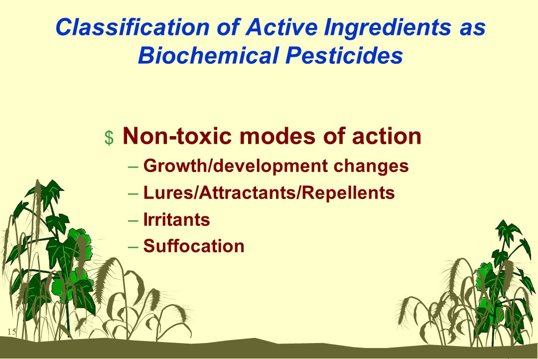 15 Classification of Active Ingredients as Biochemical Pesticides $ Non-toxic modes of action –Growth/development changes –Lures/Attractants/Repellents –Irritants –Suffocation