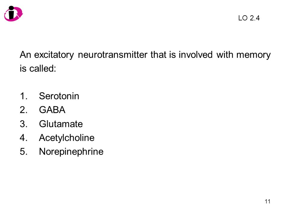 11 An excitatory neurotransmitter that is involved with memory is called: 1.Serotonin 2.GABA 3.Glutamate 4.Acetylcholine 5.Norepinephrine LO 2.4