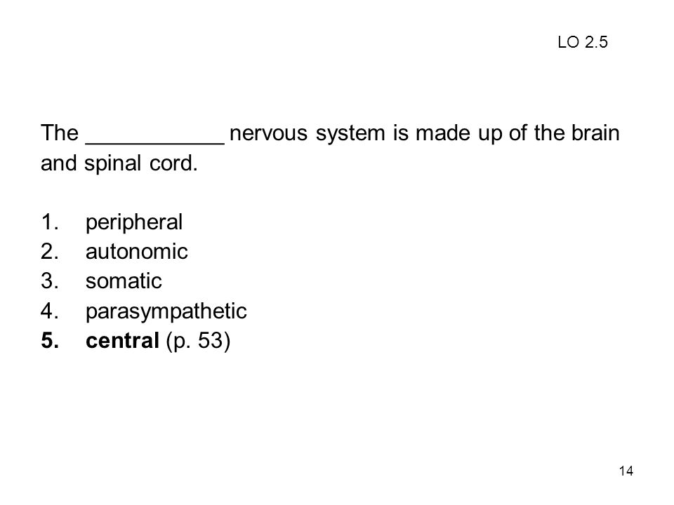 14 The ___________ nervous system is made up of the brain and spinal cord. 1.peripheral 2.autonomic 3.somatic 4.parasympathetic 5.central (p. 53) LO 2