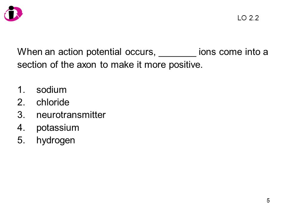 5 When an action potential occurs, _______ ions come into a section of the axon to make it more positive. 1.sodium 2.chloride 3.neurotransmitter 4.pot