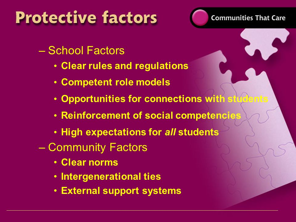 –School Factors Clear rules and regulations Competent role models Opportunities for connections with students Reinforcement of social competencies High expectations for all students –Community Factors Clear norms Intergenerational ties External support systems