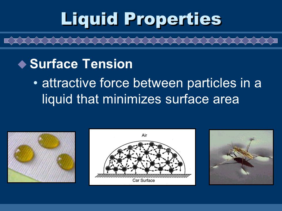 Liquid Properties  Surface Tension attractive force between particles in a liquid that minimizes surface area
