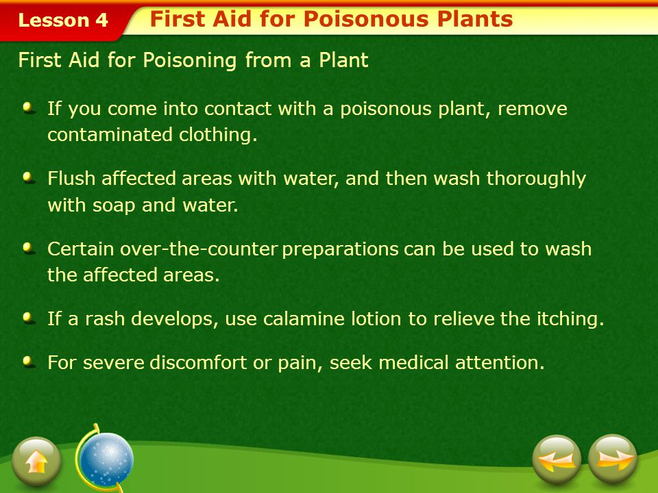 Lesson 4 Poisonous Plants About 85 percent of Americans will develop an allergic skin reaction if exposed to poison ivy, poison oak, or poison sumac.