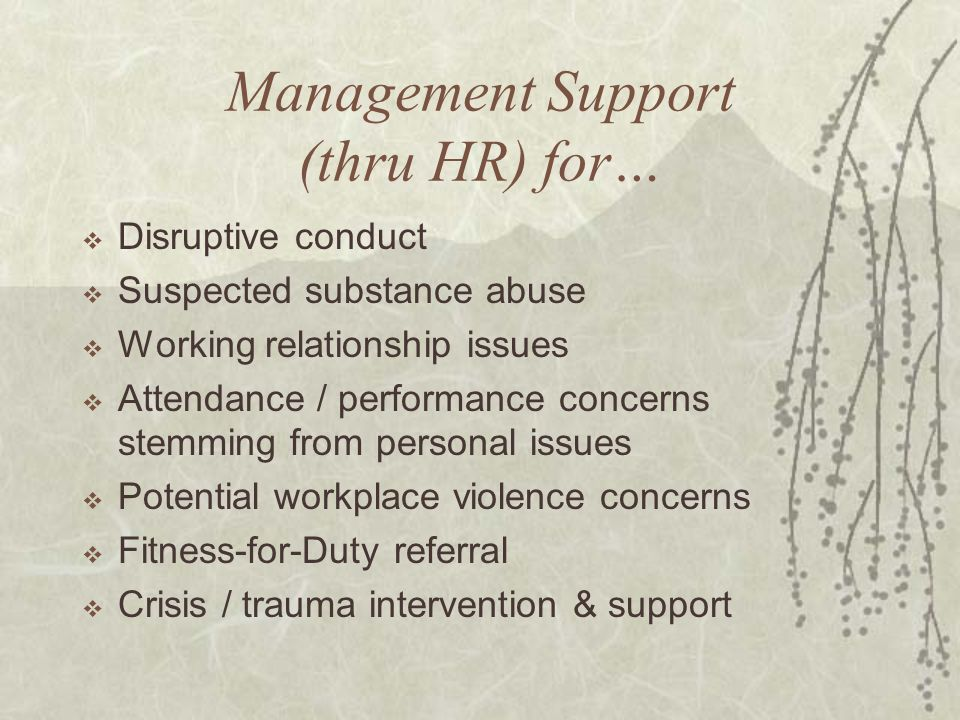 Management Support (thru HR) for…  Disruptive conduct  Suspected substance abuse  Working relationship issues  Attendance / performance concerns stemming from personal issues  Potential workplace violence concerns  Fitness-for-Duty referral  Crisis / trauma intervention & support