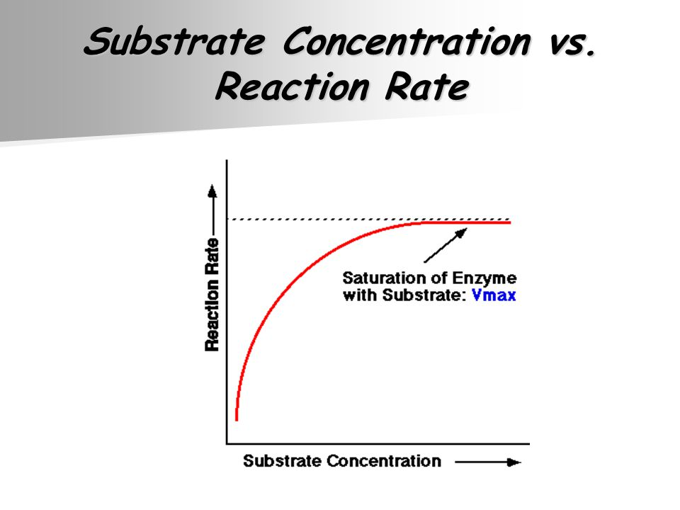 Substrate Concentration vs. Reaction Rate