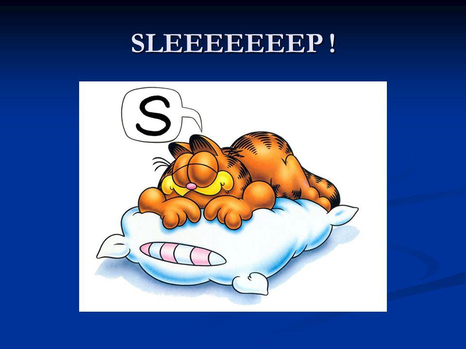 SLEEEEEEEP !