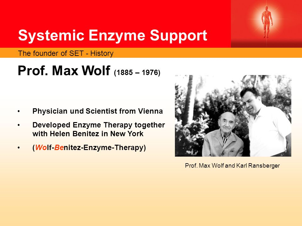 Systemic Enzyme Support Prof.