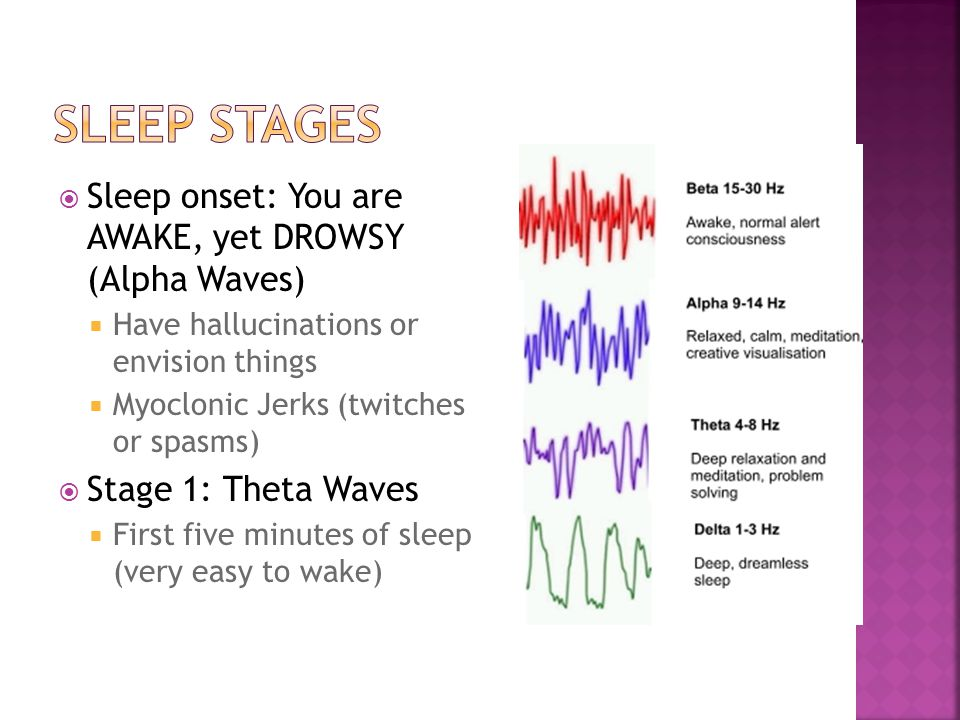  Sleep onset: You are AWAKE, yet DROWSY (Alpha Waves)  Have hallucinations or envision things  Myoclonic Jerks (twitches or spasms)  Stage 1: Thet