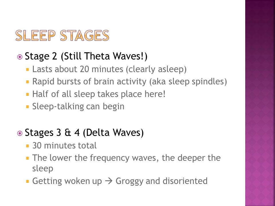  Stage 2 (Still Theta Waves!)  Lasts about 20 minutes (clearly asleep)  Rapid bursts of brain activity (aka sleep spindles)  Half of all sleep tak