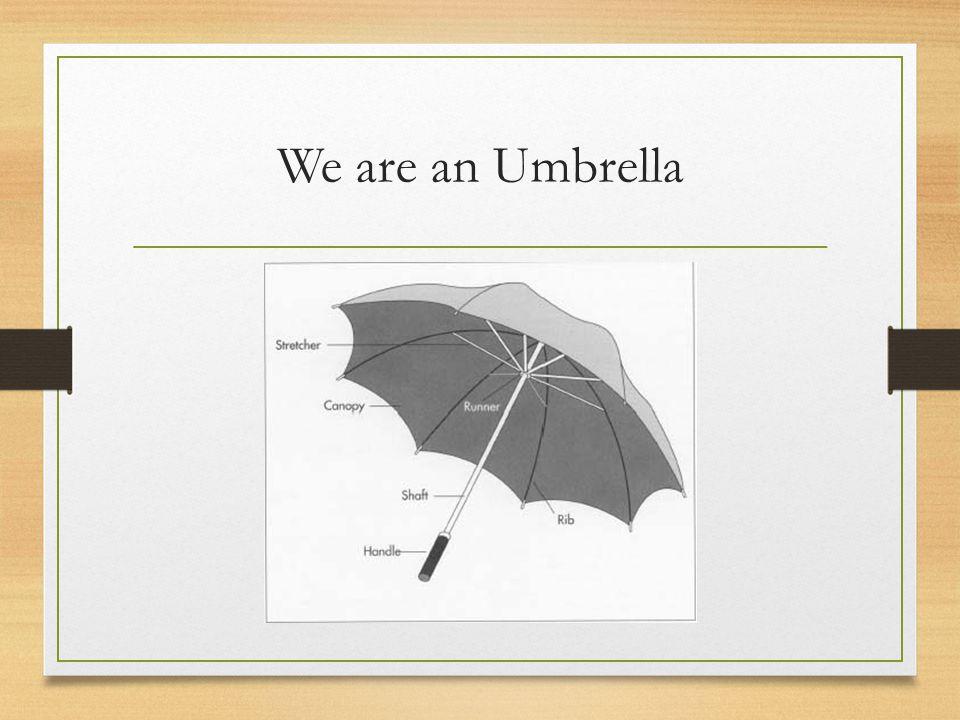 We are an Umbrella