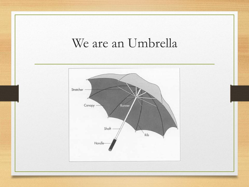 We are an Umbrella