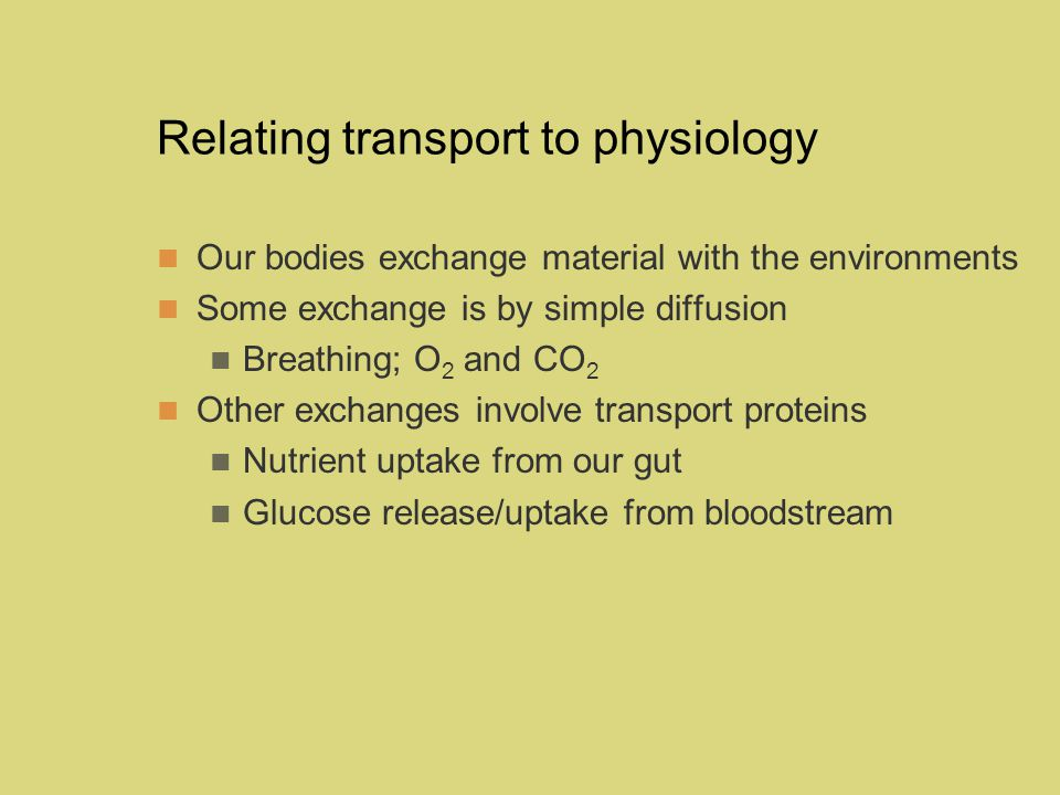 Relating transport to physiology Our bodies exchange material with the environments Some exchange is by simple diffusion Breathing; O 2 and CO 2 Other exchanges involve transport proteins Nutrient uptake from our gut Glucose release/uptake from bloodstream