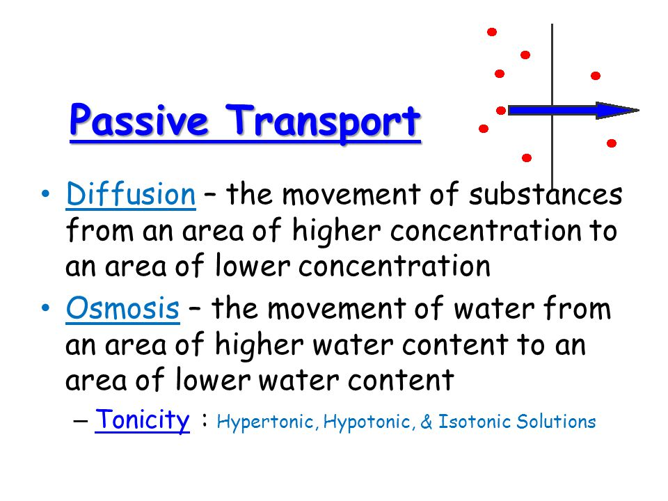 Passive Transport Passive Transport Diffusion – the movement of substances from an area of higher concentration to an area of lower concentration Osmosis – the movement of water from an area of higher water content to an area of lower water content – Tonicity : Hypertonic, Hypotonic, & Isotonic Solutions Tonicity