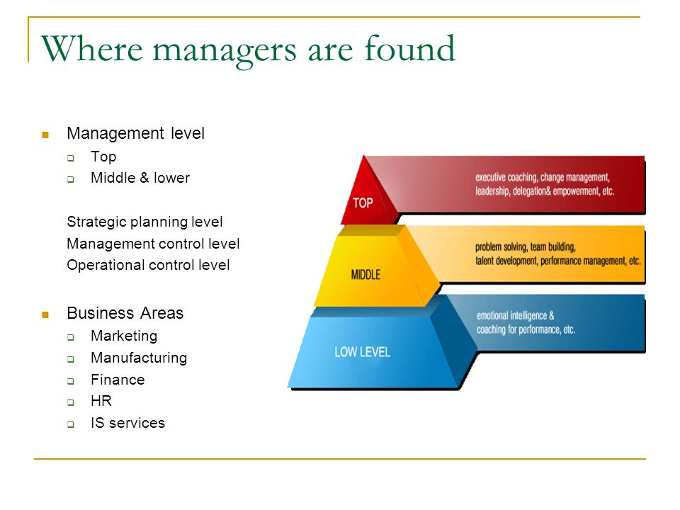 Where managers are found Management level  Top  Middle & lower Strategic planning level Management control level Operational control level Business Areas  Marketing  Manufacturing  Finance  HR  IS services