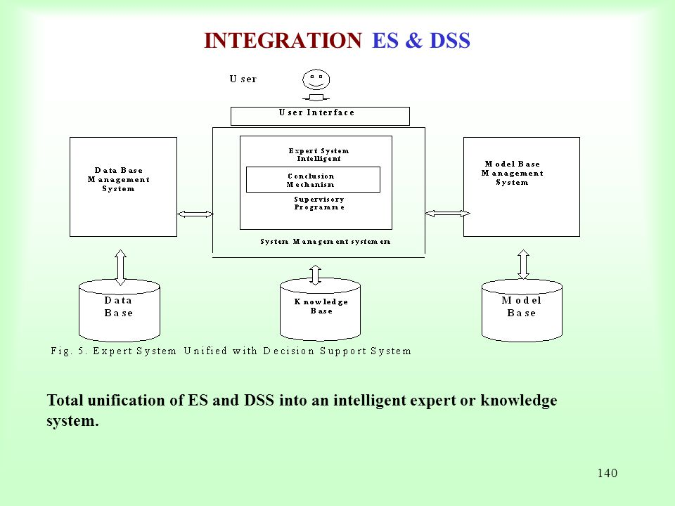 140 INTEGRATION ES & DSS Total unification of ES and DSS into an intelligent expert or knowledge system.