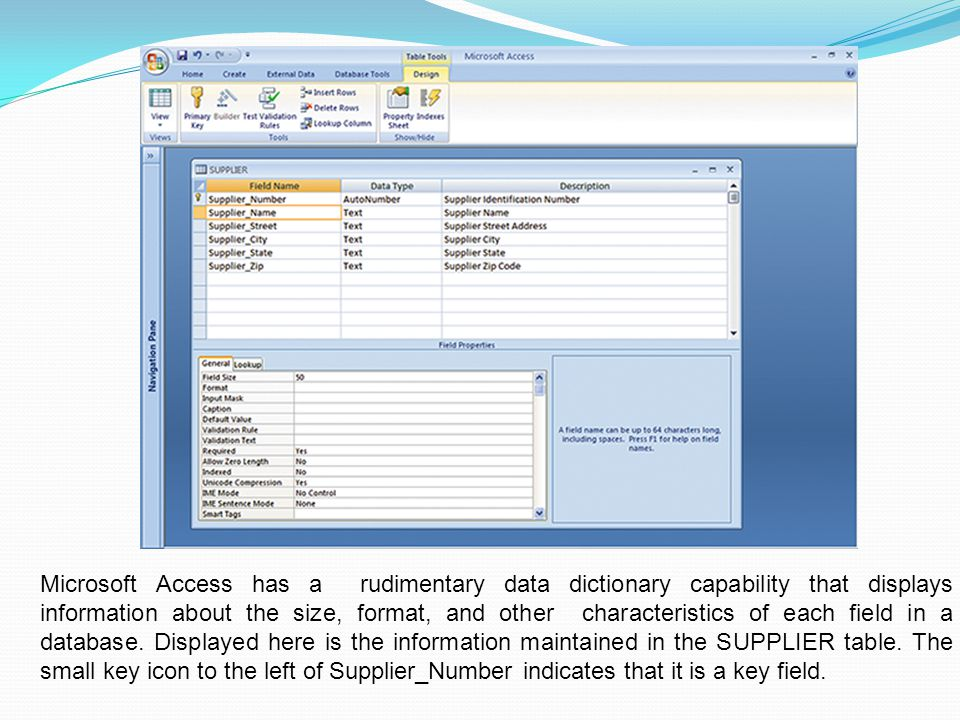 Microsoft Access has a rudimentary data dictionary capability that displays information about the size, format, and other characteristics of each field in a database.