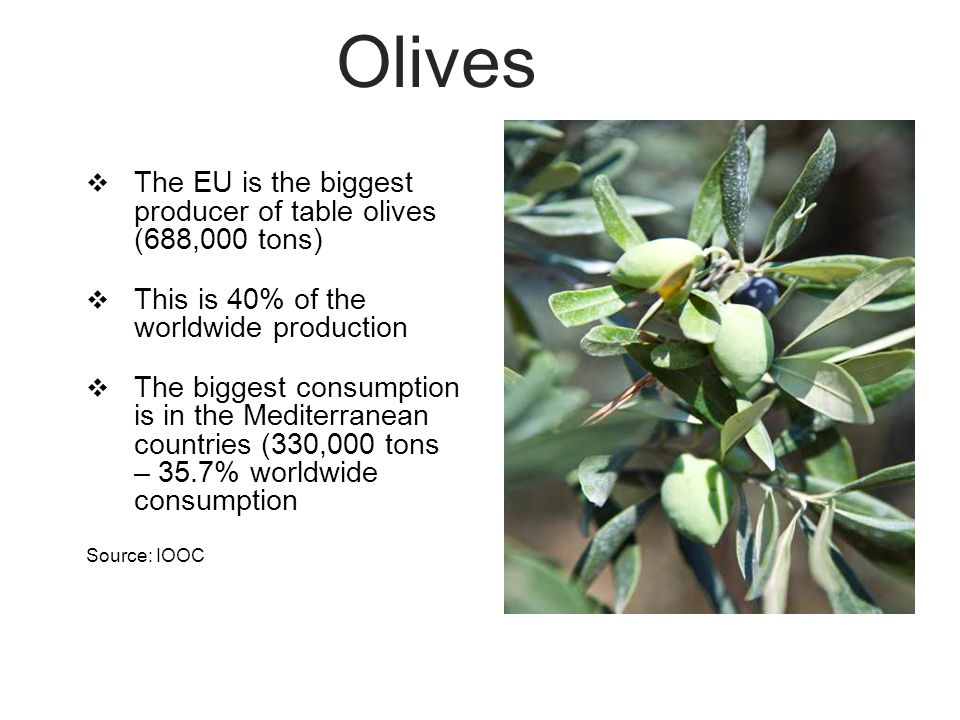 Olives  The EU is the biggest producer of table olives (688,000 tons)  This is 40% of the worldwide production  The biggest consumption is in the Mediterranean countries (330,000 tons – 35.7% worldwide consumption Source: IOOC
