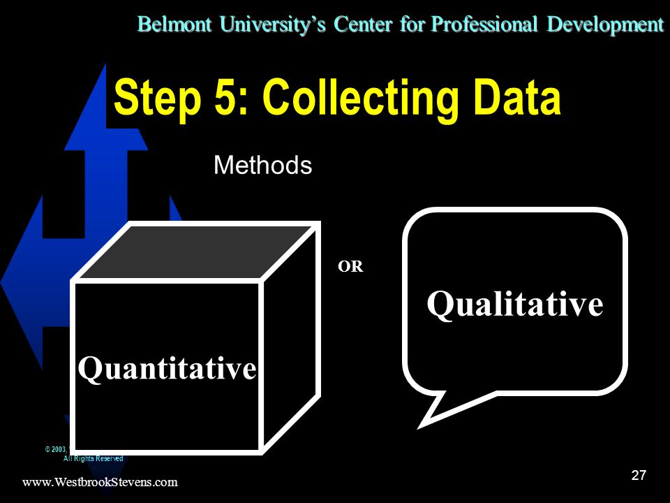 Belmont University's Center for Professional Development www.WestbrookStevens.com © 2003, Westbrook Stevens LLC All Rights Reserved 27 Step 5: Collecting Data Methods Qualitative Quantitative OR