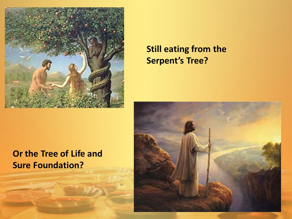 Still eating from the Serpent's Tree? Or the Tree of Life and Sure Foundation?