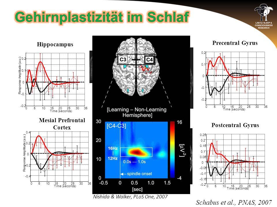 Mesial Prefrontal Cortex 05101520253035 -0.4 -0.2 0 0.2 0.4 Time (seconds) Response Amplitude (a.u.) 05101520253035 -0.2 -0.1 0 0.1 0.2 Time (seconds) Response Amplitude (a.u.) Hippocampus Schabus et al., PNAS, 2007 Nishida & Walker, PLoS One, 2007