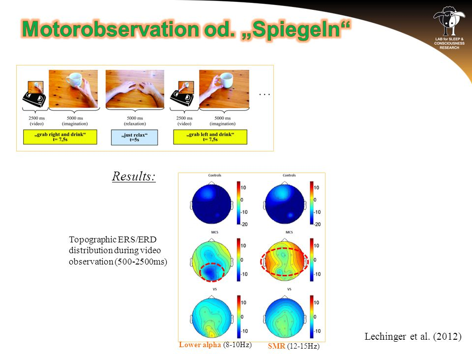 Results: Topographic ERS/ERD distribution during video observation (500-2500ms) Lechinger et al.