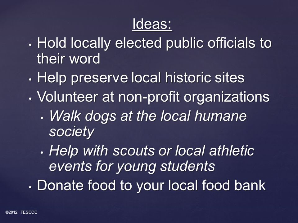 Ideas: Hold locally elected public officials to their word Hold locally elected public officials to their word Help preserve local historic sites Help preserve local historic sites Volunteer at non-profit organizations Volunteer at non-profit organizations Walk dogs at the local humane society Walk dogs at the local humane society Help with scouts or local athletic events for young students Help with scouts or local athletic events for young students Donate food to your local food bank Donate food to your local food bank ©2012, TESCCC