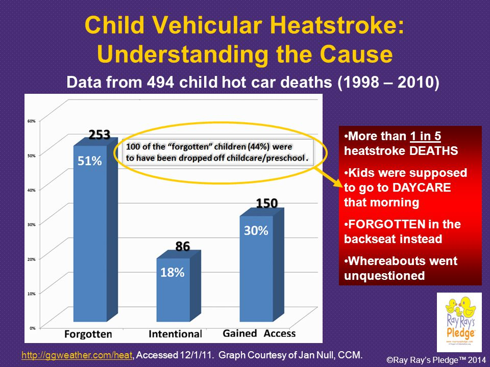 ©Ray Ray's Pledge™ 2014 Child Deaths Due to Vehicular Heatstroke: Why Are We Talking About It.