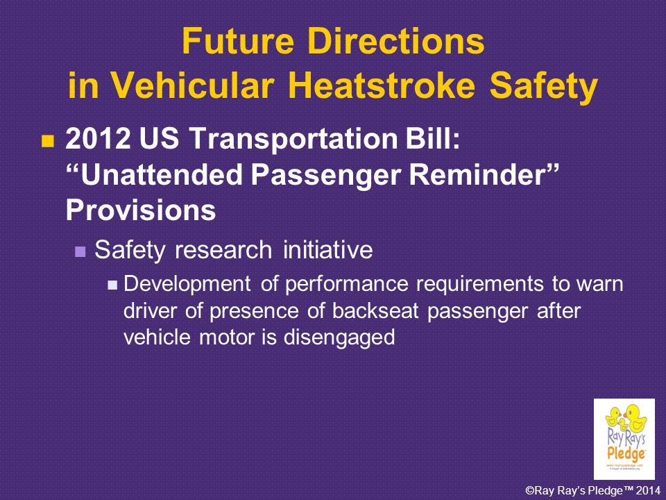 ©Ray Ray's Pledge™ 2014 Car Seat Alarms.