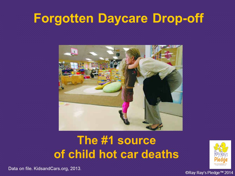 ©Ray Ray's Pledge™ 2014 651 The number of child hot car deaths reported in the media since 1990 Data on file.