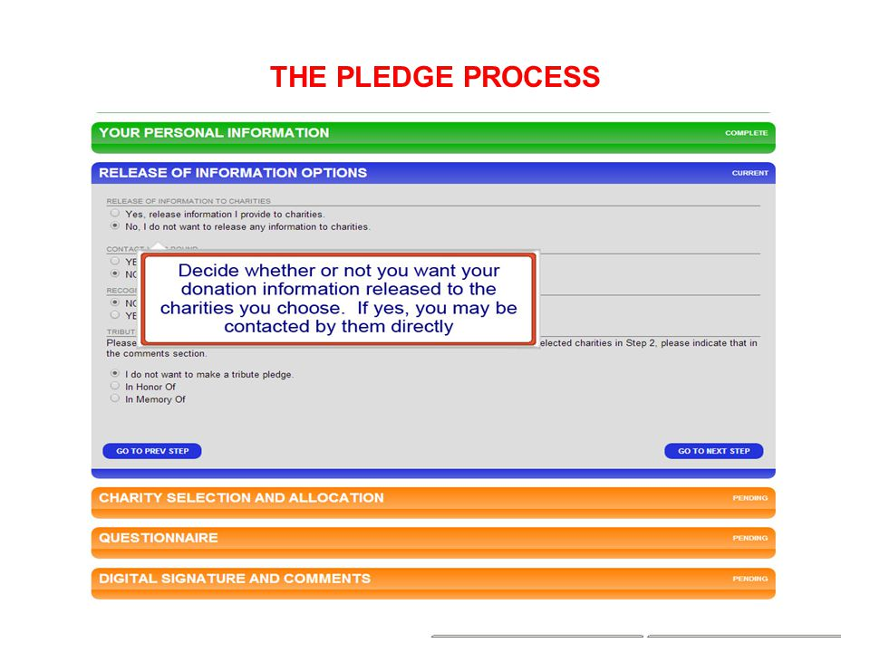 THE PLEDGE PROCESS