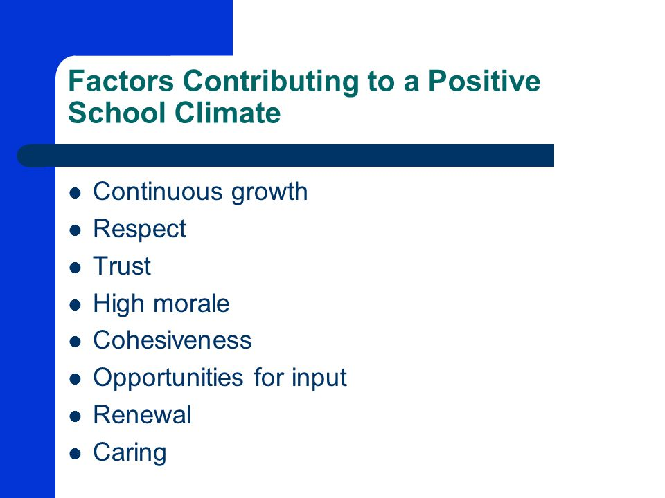 Factors Contributing to a Positive School Climate Continuous growth Respect Trust High morale Cohesiveness Opportunities for input Renewal Caring