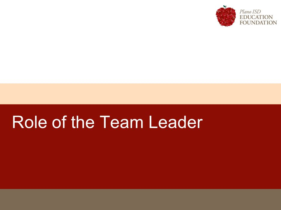 Role of the Team Leader